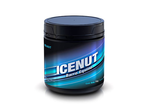 HEANUT_ICENUT_HOME_2